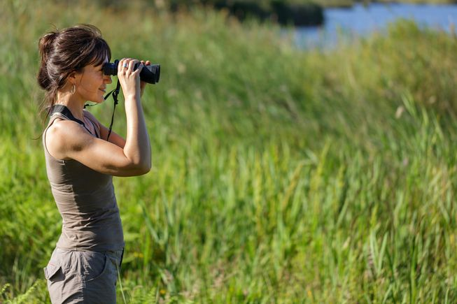 woman-watching-birds.jpg.653x0_q80_crop-smart